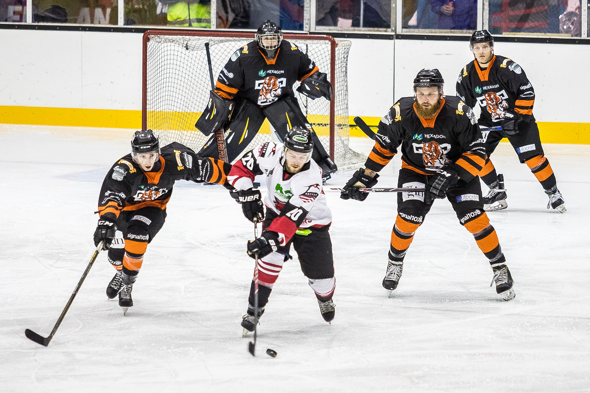 Murrayfield Racers vs Telford Tigers
